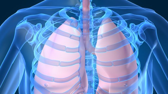 Fighting Fungal Lung Infections with Innovative Inhaled Technology - Fighting Fungal Lung Infections with Innovative Inhaled Technology